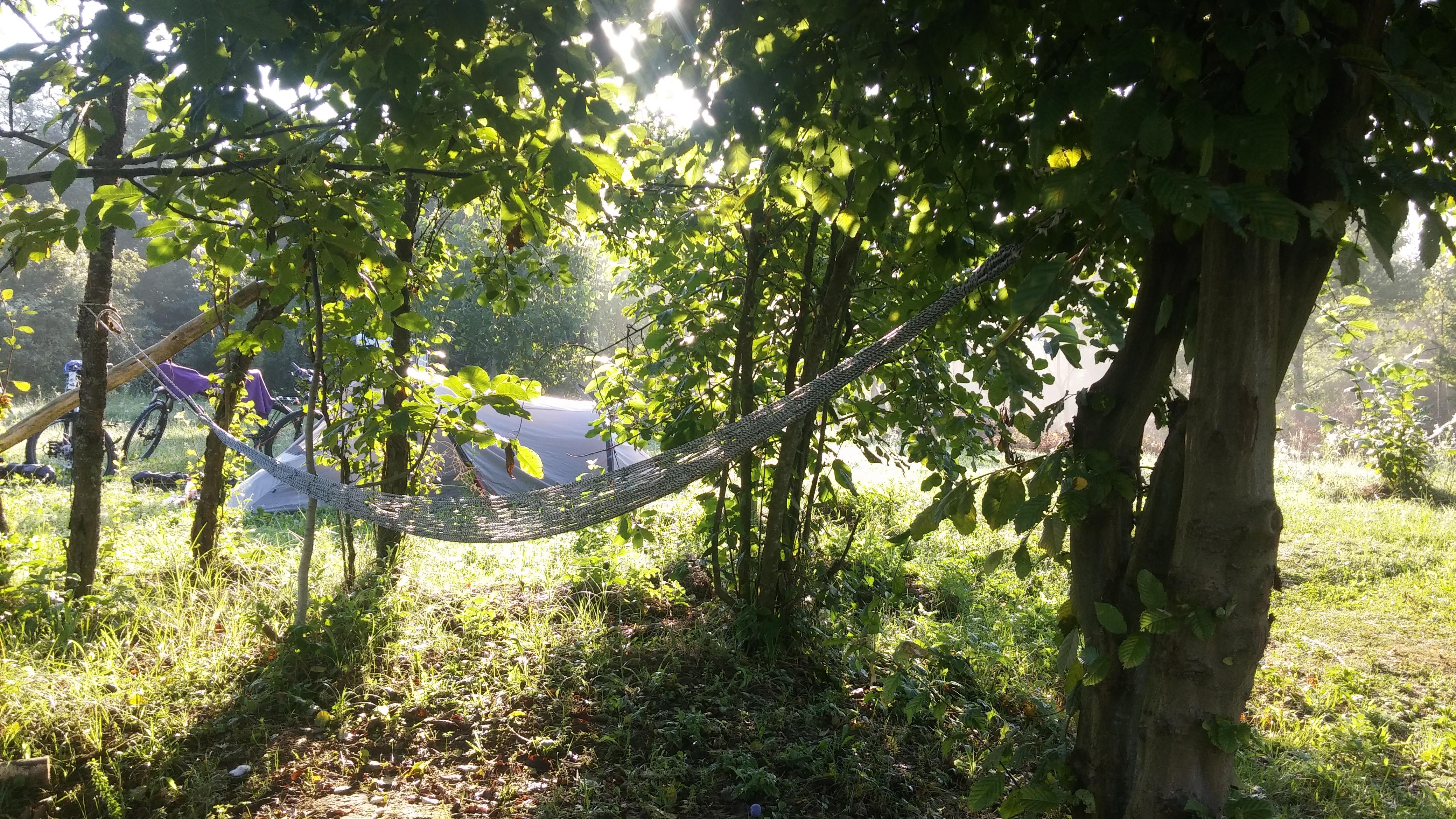 Geniet van de natuur in ons Rijk Bos!